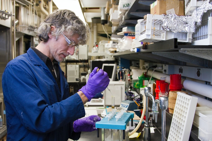 How Does Protein Expression Work?